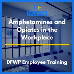Amphetamines and Opiates in the Workplace Training CD Cover