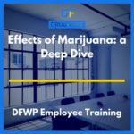 Effects of Marijuana Training CD Cover