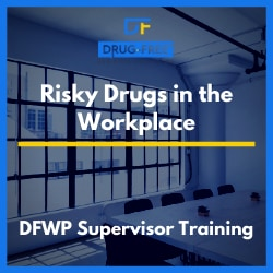 Risky Drugs in the Workplace Training Program CD Cover